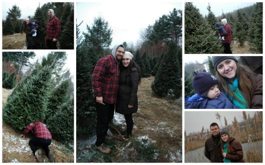 Christmas 2012-2