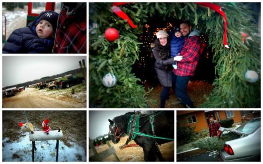 Christmas 2012-3