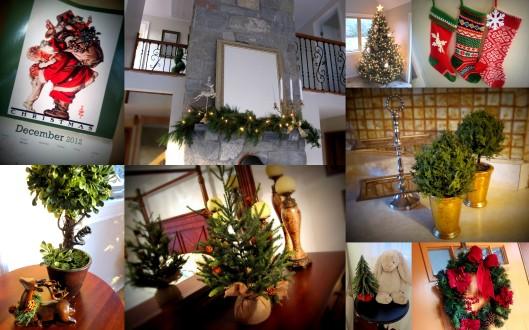 Christmas 2012-5